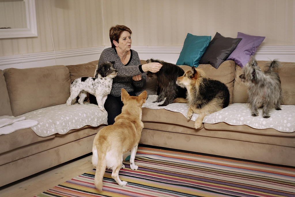 Liselotte and her five dogs from Greece.